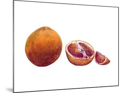 Watercolor Blood Orange-Michael Willett-Mounted Art Print