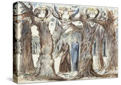 Illustrations to Dante's Divine Comedy, the Wood of the Self-Murderers-William Blake-Stretched Canvas Print