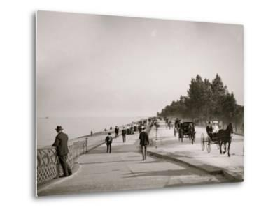 Lake Shore Drive, Lincoln Park, Chicago, Ill.--Metal Print