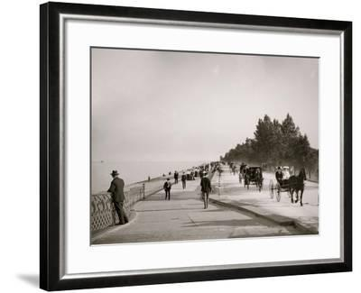 Lake Shore Drive, Lincoln Park, Chicago, Ill.--Framed Photo