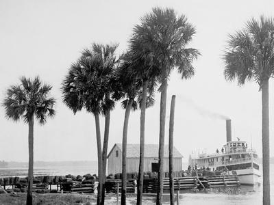 Beresford on the St. Johns, Fla.--Framed Photo
