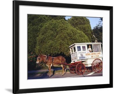 Roman Chewing Candy Cart-Carol Highsmith-Framed Photo