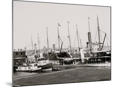 U.S. Government Fleet at Sault Ste. Marie, Mich.--Mounted Photo