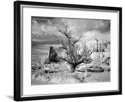 Monument Valley, Arizona-Carol Highsmith-Framed Photo