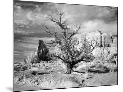 Monument Valley, Arizona-Carol Highsmith-Mounted Photo