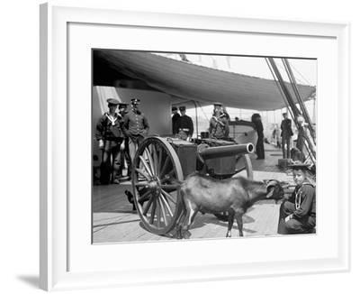 U.S.S. New York, Admiral Sampsons Son Andpitch the Mascot--Framed Photo
