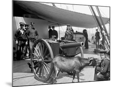 U.S.S. New York, Admiral Sampsons Son Andpitch the Mascot--Mounted Photo