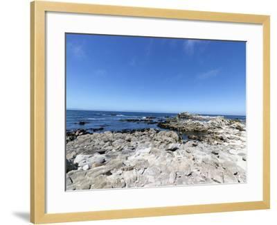 Road Through Pacific Grove and Pebble Beach-Carol Highsmith-Framed Photo
