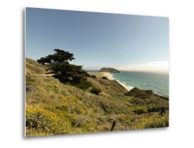 Road Through Pacific Grove and Pebble Beach-Carol Highsmith-Metal Print
