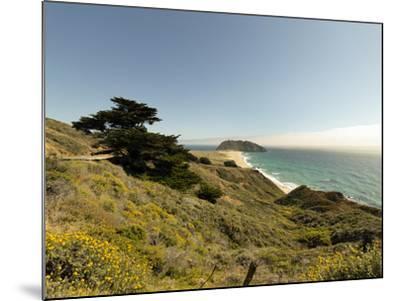 Road Through Pacific Grove and Pebble Beach-Carol Highsmith-Mounted Photo