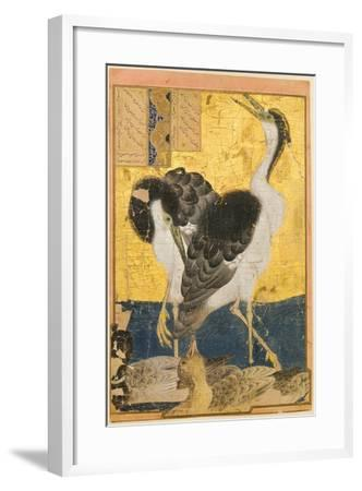 Two Herons with Ducks--Framed Art Print