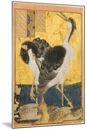 Two Herons with Ducks--Mounted Art Print