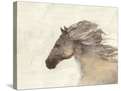 Into the Wind Ivory-Albena Hristova-Stretched Canvas Print