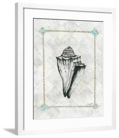 Conch Shell-Courtney Prahl-Framed Art Print