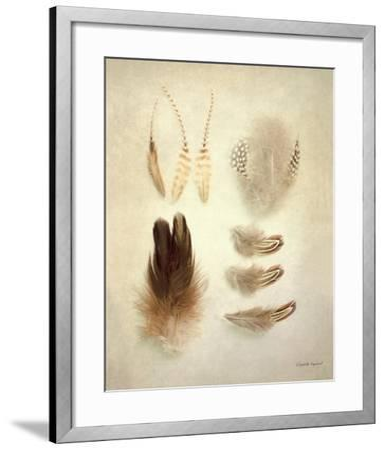 Feathers II-Elizabeth Urquhart-Framed Art Print