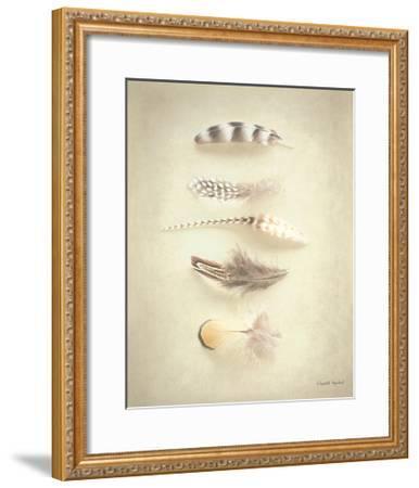 Feathers III-Elizabeth Urquhart-Framed Art Print
