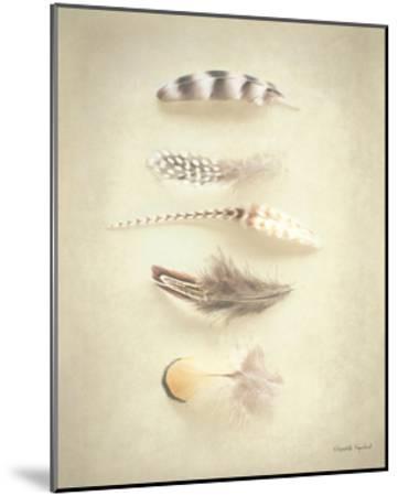 Feathers III-Elizabeth Urquhart-Mounted Art Print