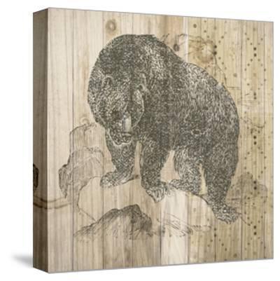 Natural History Lodge IV-Elyse DeNeige-Stretched Canvas Print