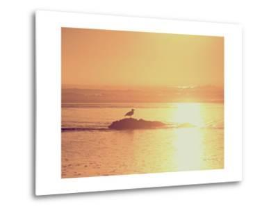 Kalaloch Sunset I Crop-Laura Marshall-Metal Print