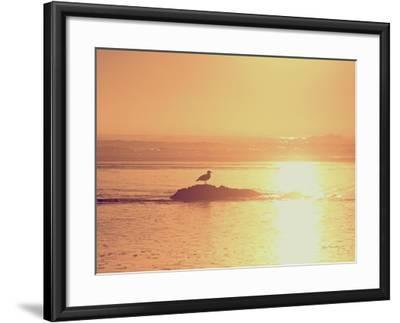 Kalaloch Sunset I Crop-Laura Marshall-Framed Art Print