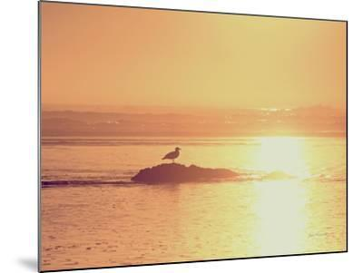 Kalaloch Sunset I Crop-Laura Marshall-Mounted Art Print