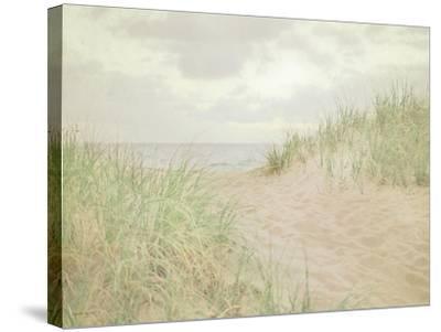 Beach Grass III-Elizabeth Urquhart-Stretched Canvas Print