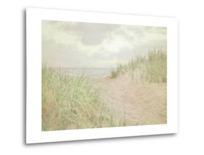 Beach Grass III-Elizabeth Urquhart-Metal Print