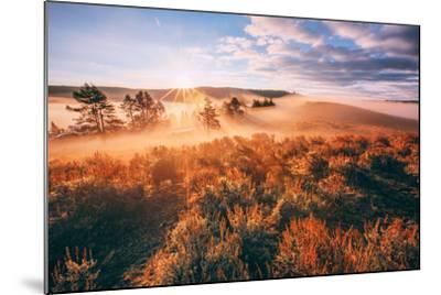 Sudden Fog and Light Beams, Morning at Yellowstone National Park-Vincent James-Mounted Photographic Print