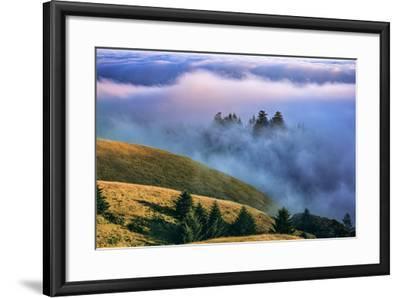 Magical Land of Fog and Light, Mount Tamalpais State Park, California-Vincent James-Framed Photographic Print