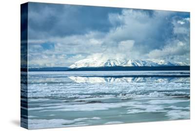 Icy Summer Landscape at Yellowstone Lake, Wyoming-Vincent James-Stretched Canvas Print