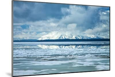 Icy Summer Landscape at Yellowstone Lake, Wyoming-Vincent James-Mounted Photographic Print