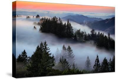 In A Dream of Fog Mount Tamalpais San Francisco-Vincent James-Stretched Canvas Print