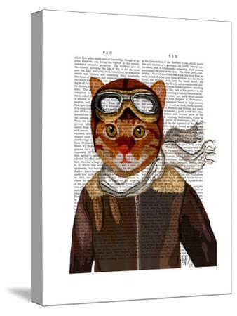 Flying Cat-Fab Funky-Stretched Canvas Print