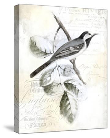 Rustic Gould I-Studio W-Stretched Canvas Print