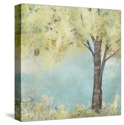 Glen Arbor I-June Erica Vess-Stretched Canvas Print