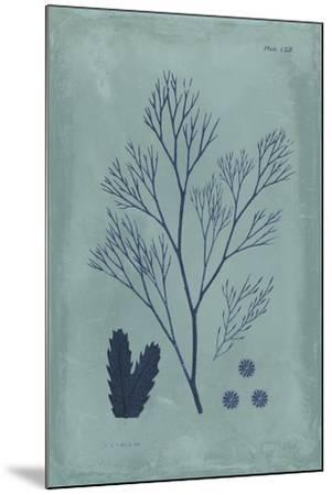 Indigo and Azure Seaweed V-Vision Studio-Mounted Art Print