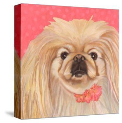 Dlynn's Dogs - Pinky-Dlynn Roll-Stretched Canvas Print
