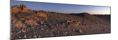 Panoramic View of Scattered Rocks on the Barren Landscape of the Atacama Desert at Dusk-Babak Tafreshi-Mounted Photographic Print