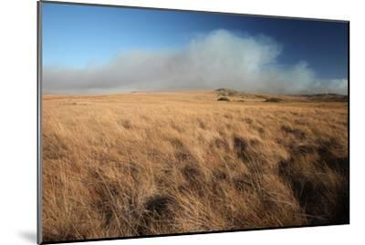 Clouds Blow on the Horizon over Grasslands of Serra Da Canastra National Park-Cagan Sekercioglu-Mounted Photographic Print