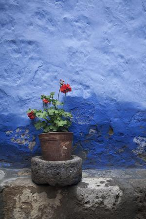 A Colorful Blue Wall and a Red Geranium in a Pot Inside the Santa Catalina Monastery-Gabby Salazar-Metal Print