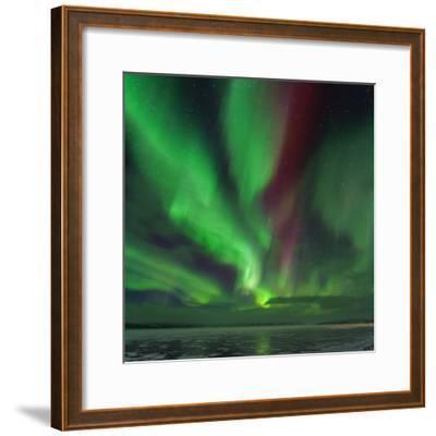 A Colorful Aurora Display over a Frozen Lake in Abisko National Park-Babak Tafreshi-Framed Photographic Print