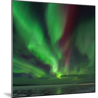 A Colorful Aurora Display over a Frozen Lake in Abisko National Park-Babak Tafreshi-Mounted Photographic Print