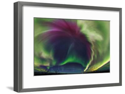 The Northrn Lights. Panoramic Projection of a Colorful Strong Aurora Outburst-Babak Tafreshi-Framed Photographic Print