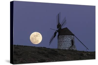 The Full Moon, and Wolf Moon, the First Full Moon after the Winter Solstice, over a Windmill-Babak Tafreshi-Stretched Canvas Print