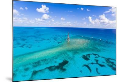 Aerial View of Diving and Snorkeling Boats-Mike Theiss-Mounted Photographic Print