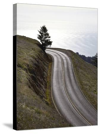 A Road in Mount Tamalpais State Park with a View of the Pacific Ocean in the Distance-Keith Barraclough-Stretched Canvas Print