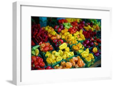 Colorful Peppers for Sale at a Farmers' Market-Kike Calvo-Framed Premium Photographic Print