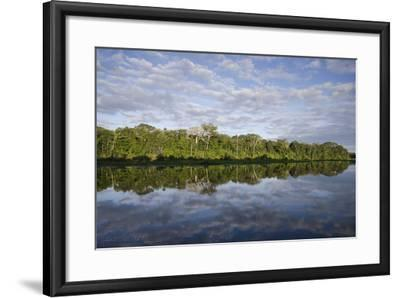 Clouds and Forested Coastline Reflected in Calm Water-Bertie Gregory-Framed Photographic Print