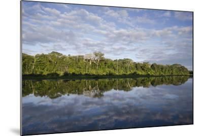 Clouds and Forested Coastline Reflected in Calm Water-Bertie Gregory-Mounted Photographic Print