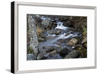 A Flowing River in Acadia National Park, Maine-Mauricio Handler-Framed Photographic Print